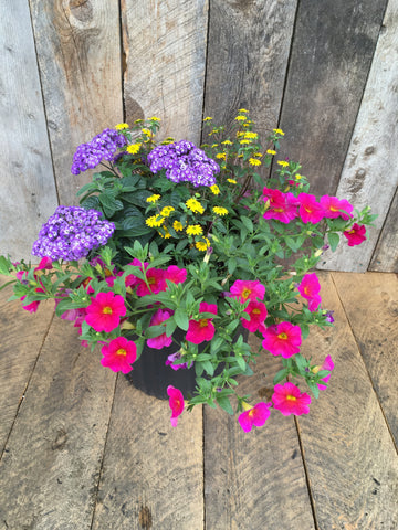 PLANTER (16 inches) 'SHADE'