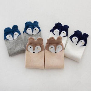 Squirrel Socks Collection
