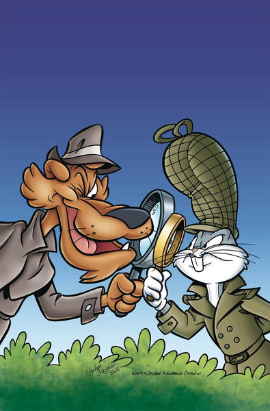 LOONEY TUNES VOL 3 #232 COVER A 1st PRINT