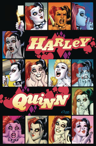 HARLEY QUINN A ROGUES GALLERY THE DLX COVER ART COLL HC