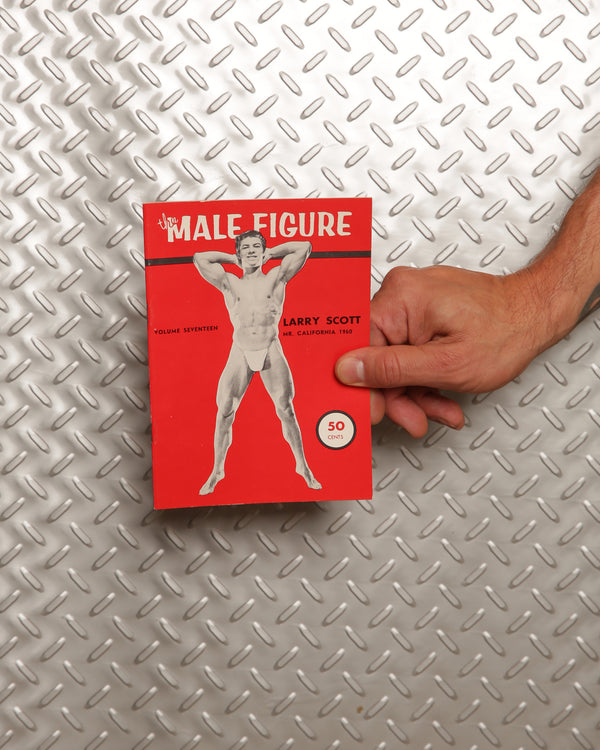 The Male Figure Volume 17
