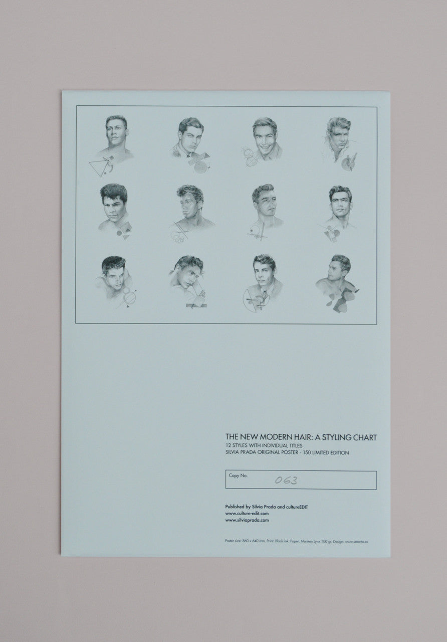 Silvia Prada, The New Modern Hair: A Styling Chart Poster