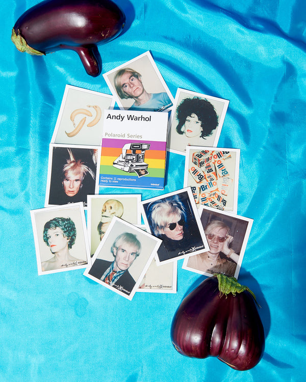 Andy Warhol Polaroid Series Vol. 1 by Kidrobot