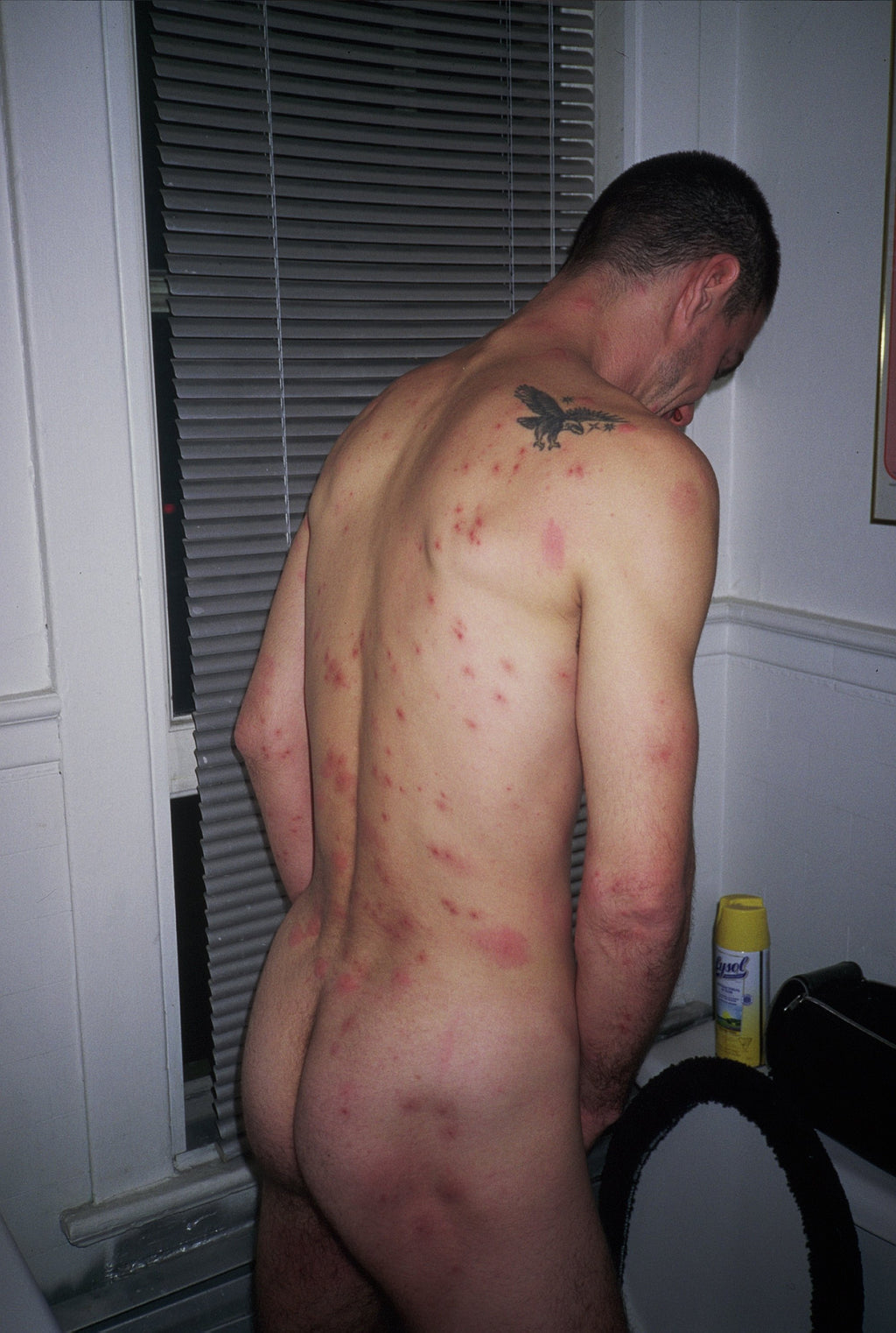 BRUCE LABRUCE, Bad Rash, 2003
