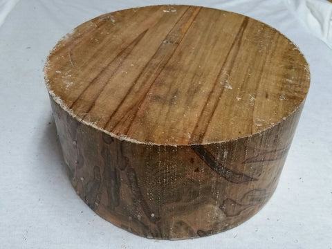 "Spalted Ambrosia Maple 8"" x 4"""