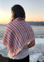 Agaati Pink Stripes Silk Hand Weaved Shawl from Varanasi - Back
