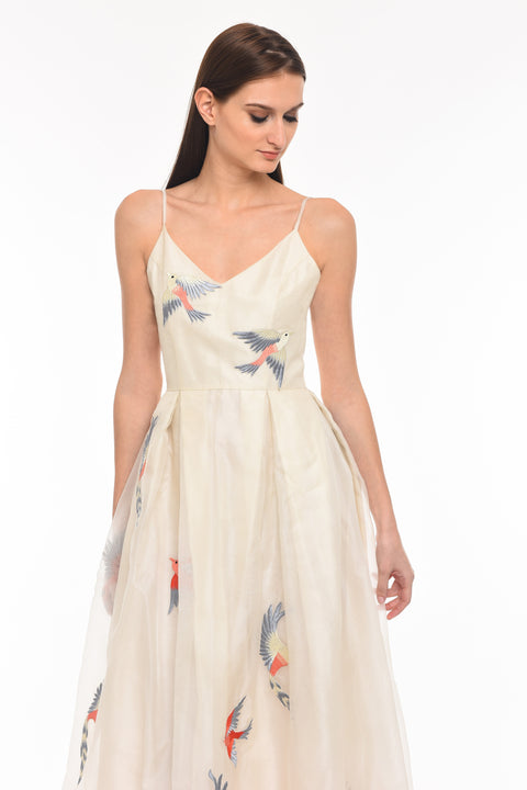 Agaati Long Embroidered Ivory silk organza Dress - front 4