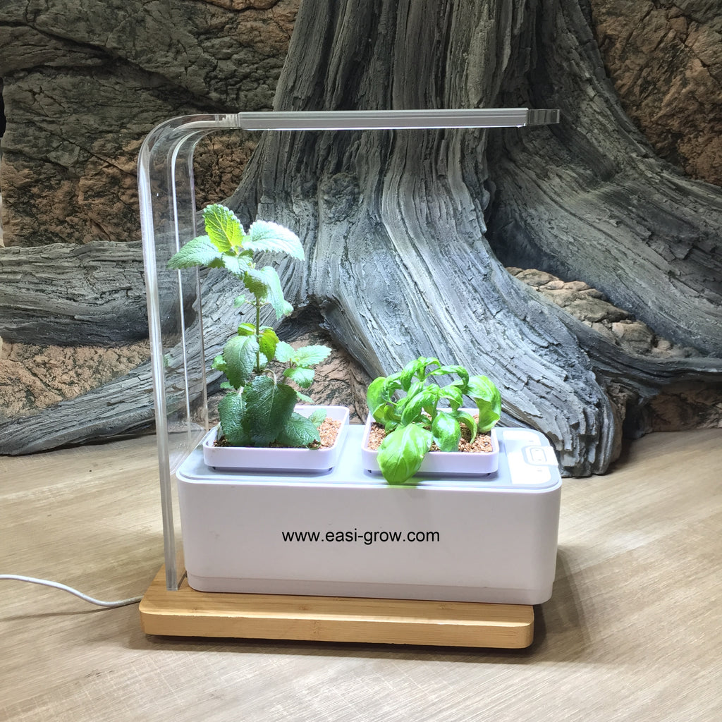 Complete Hydroponic Mini Set (Out of Stock)