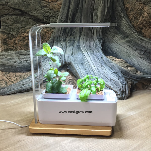 Complete Hydroponic Mini Set