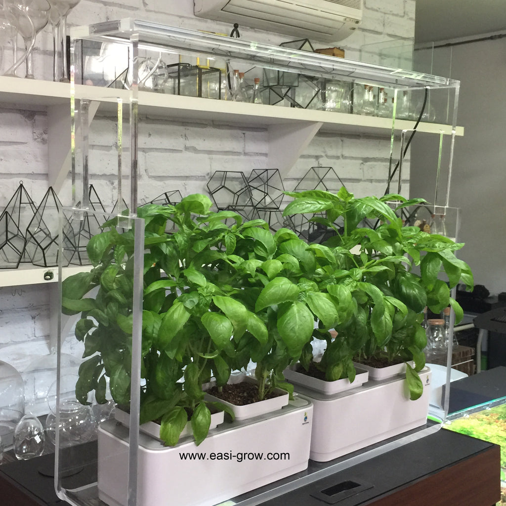 Complete Hydroponic Duo Mini Set