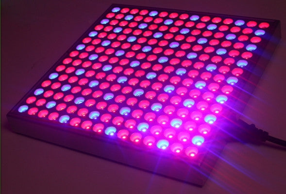 LED Panel Grow Light, 45W