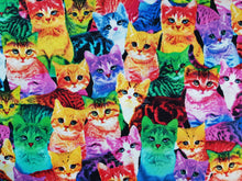 Face Mask - Rainbow Cats