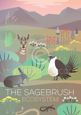 THE SAGEBRUSH ECO SYSTEM PRINT