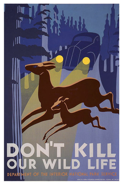 DON'T KILL OUR WILDLIFE WPA POSTAL CARD