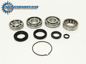 Synchrotech K Series Bearing Seal Kit 02-04
