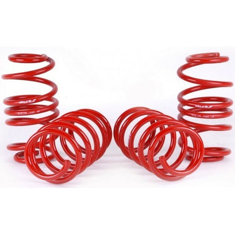 2012-15 CIVIC SKUNK2 LOWERING SPRINGS