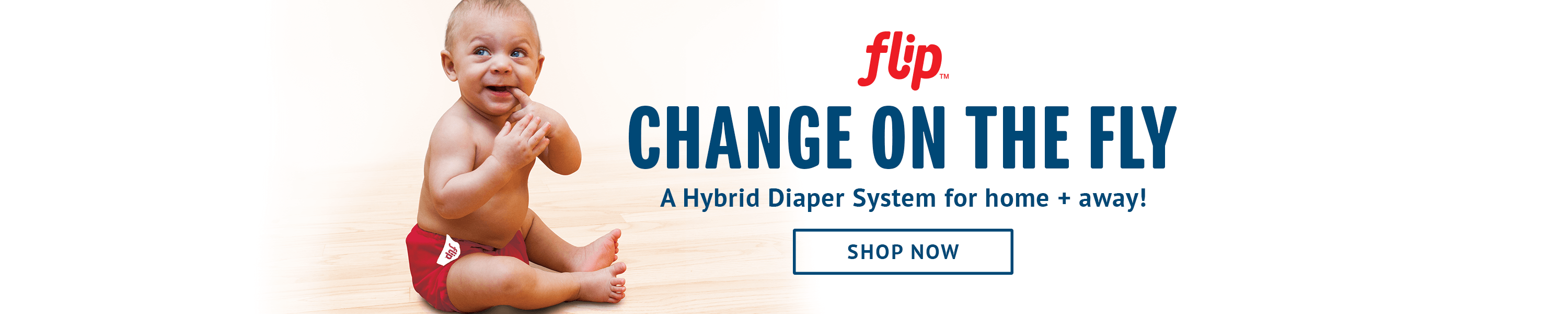 Image of Flip! Change on the Fly. A Hybrid Diaper System for home and away!