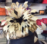 Morgan & Taylor Fascinator Gold & Black
