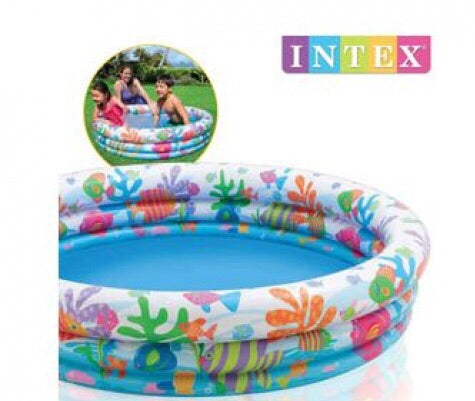 Intex Fishbowl Pool