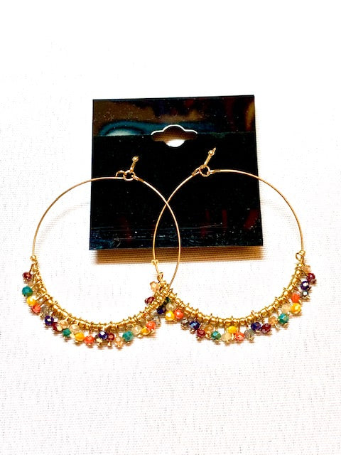 Jewelry - Multi Faceted Earring