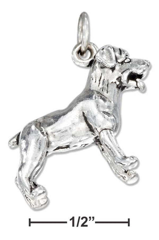 Sterling Silver Three Dimensional Rottweiler Dog Charm | Jewelry Store
