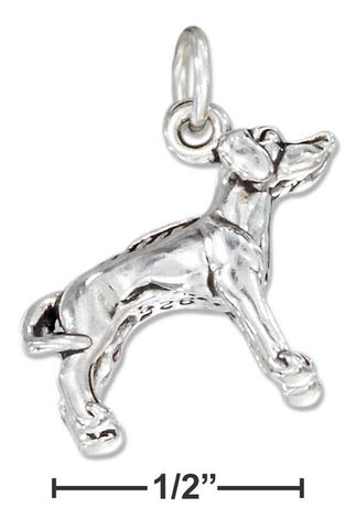 Sterling Silver Three Dimensional Rhodesian Ridgeback Dog Charm | Jewelry Store