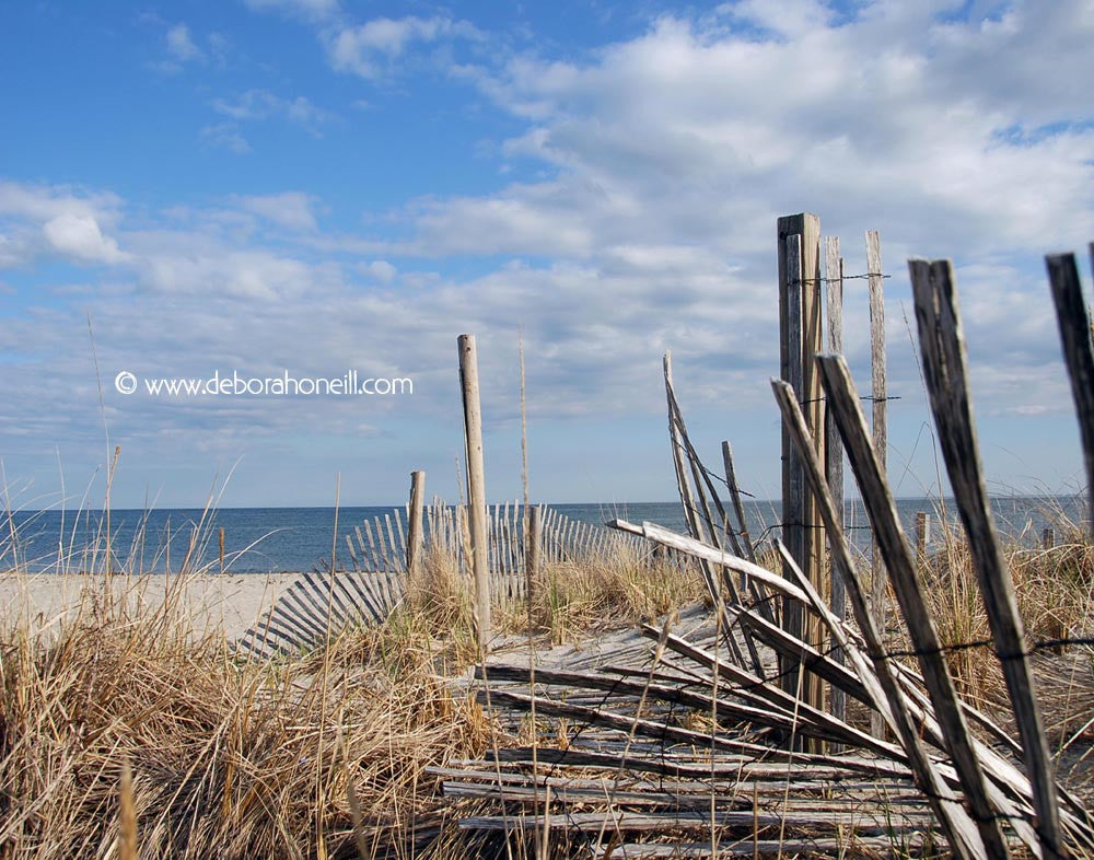 Ocean, Broken Fences, Cape Cod, MA, 16x20 print