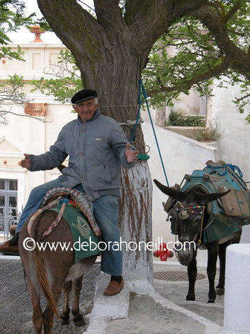 Greece Donkey Man of Santorini, 16x20 print