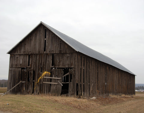 BARN, Hello Yellow, Hadley, MA, 16x20 print