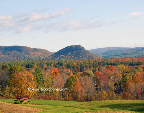 Northeast, Mt. Sugarloaf Fall, MA,16x20 print