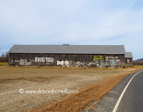 Northampton MA Area, Graffiti Barn, Hatfield, MA,16x20 print
