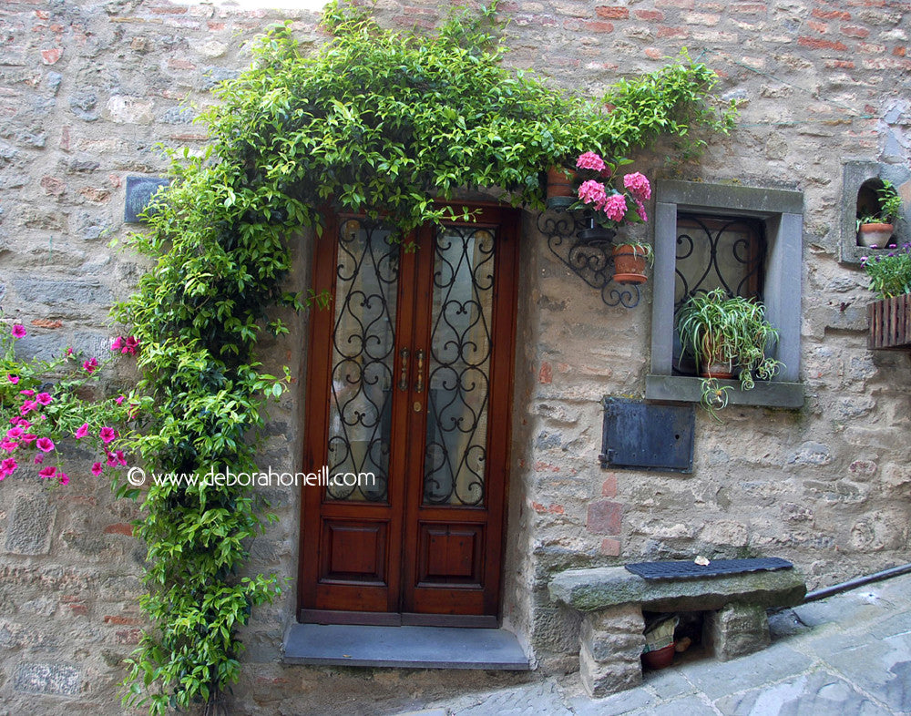 Italy, Door of Roses, Tuscany, 16x20 print