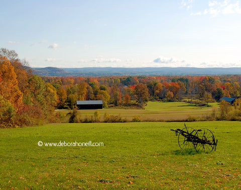 Northeast, Whately MA Fall Farm View, 16x20 print