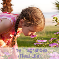 Fine Fragrances (Real Life)