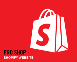 Shopify E-Commerce Start-Up Package - Mobile Responsive Website for Selling Online