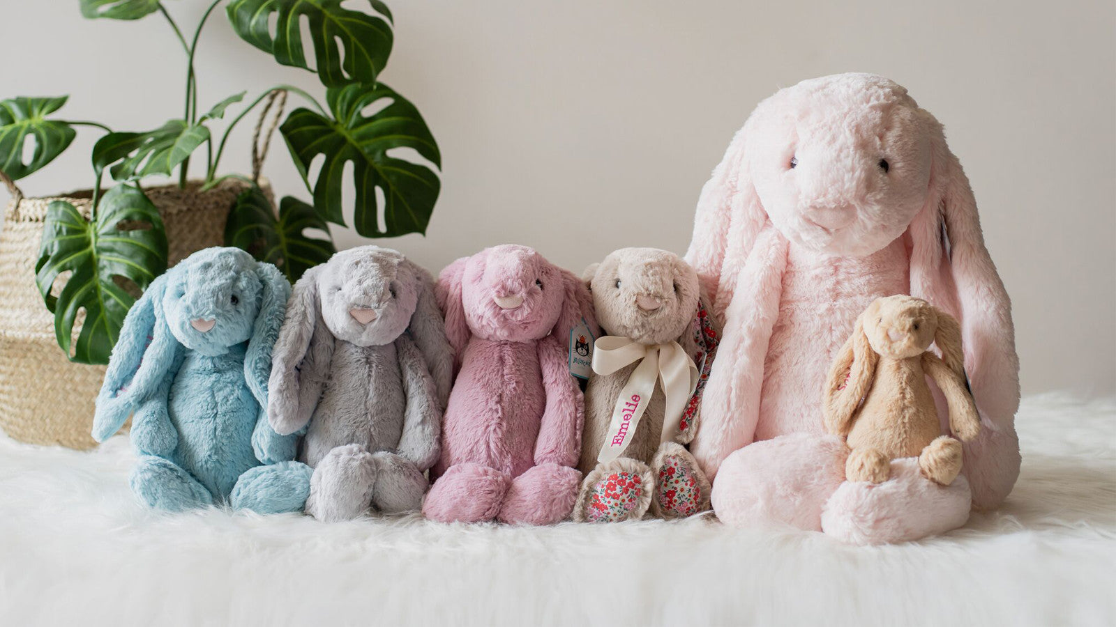 Cuddly Soft Toys and Plush Toys_Collection_Page