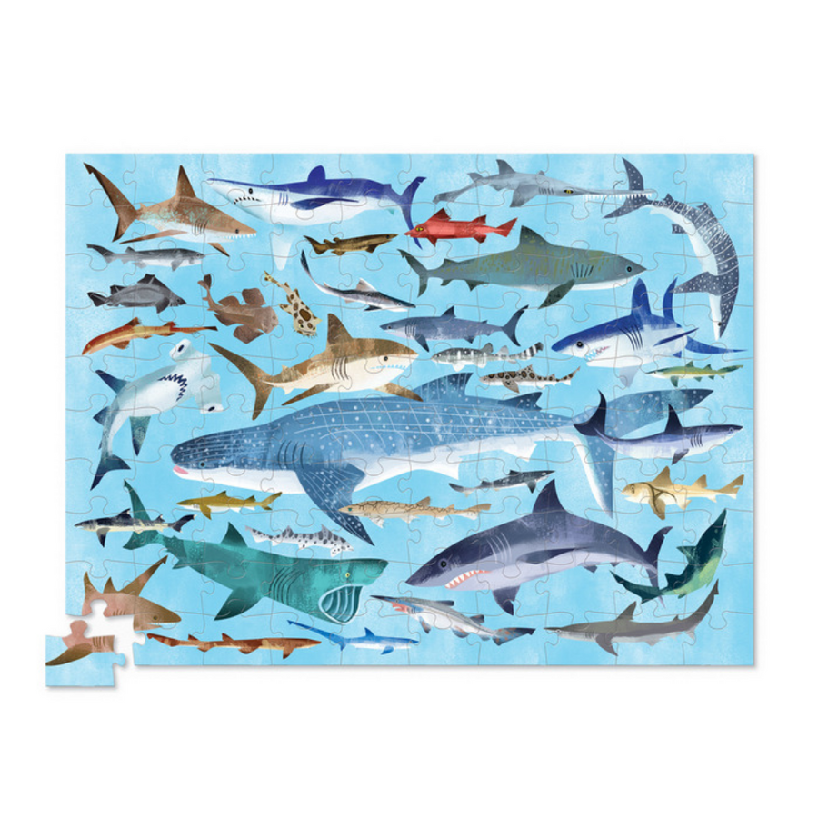 100 Piece Puzzle - 36 Sharks Crocodile Creek