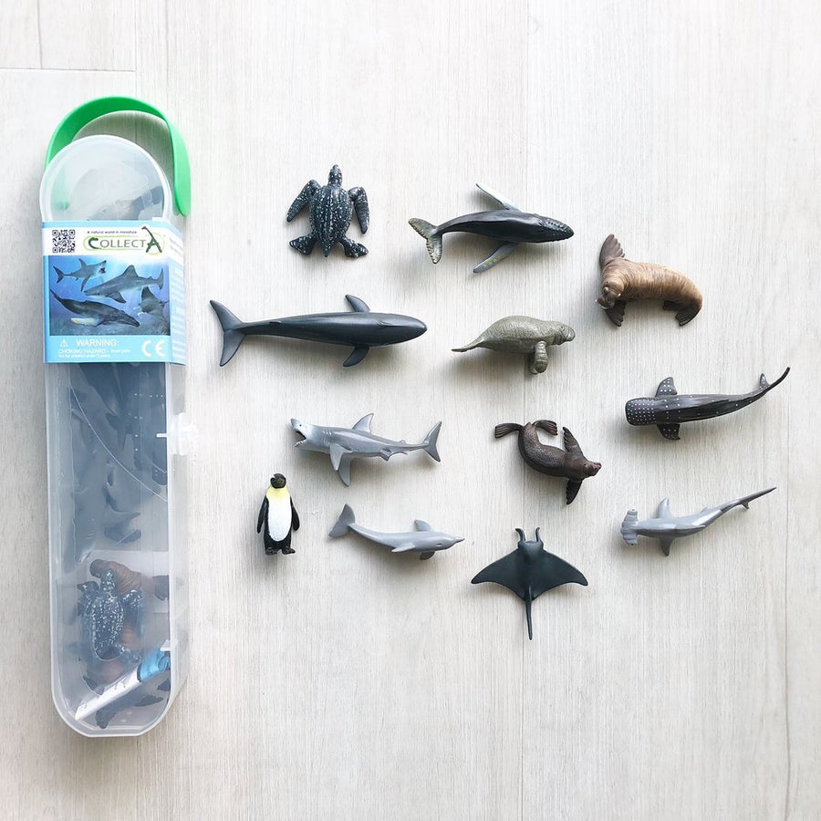 Collect A Box of Mini Sea Life 1