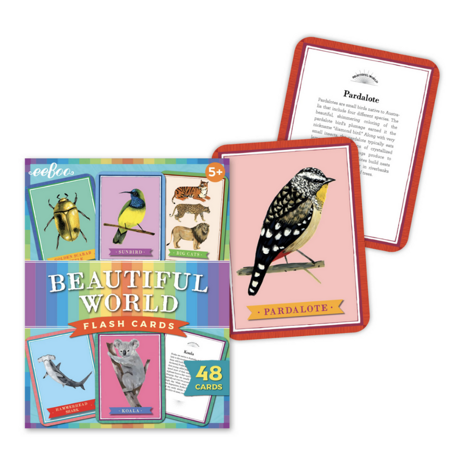 Beautiful World Flashcards