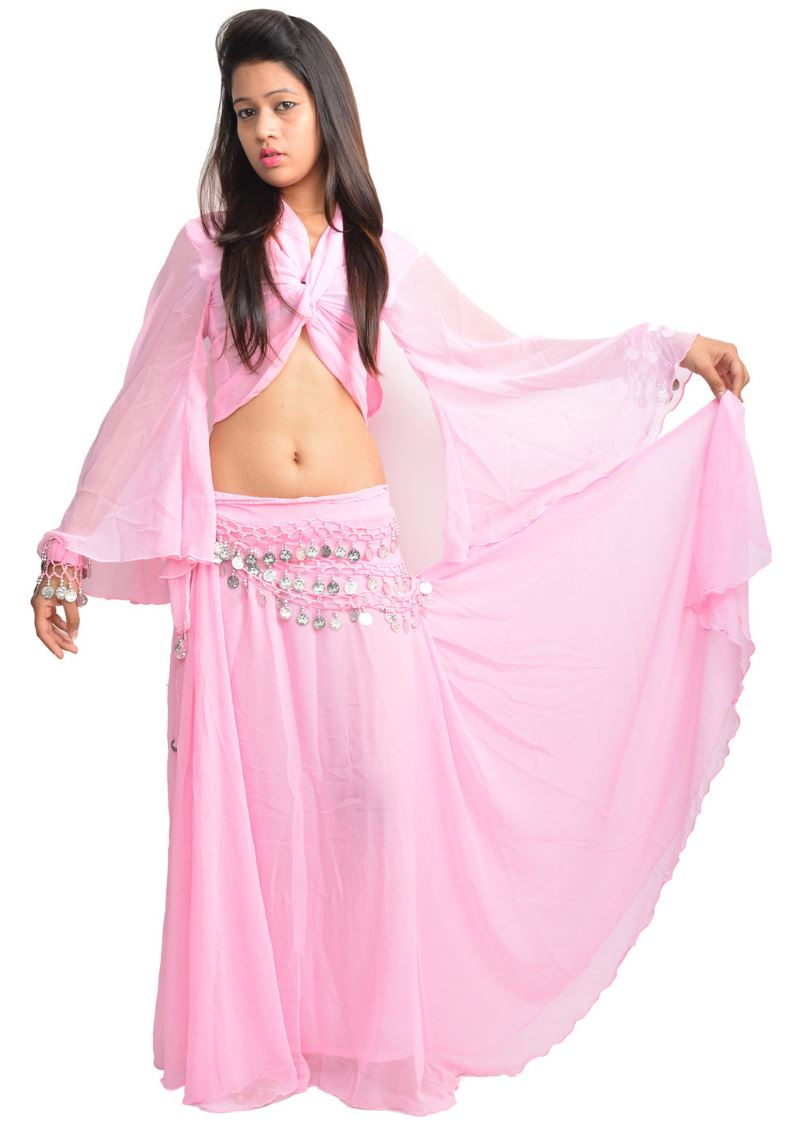 Wevez 3 Peice Chiffon / Georgette Belly Dance Costume