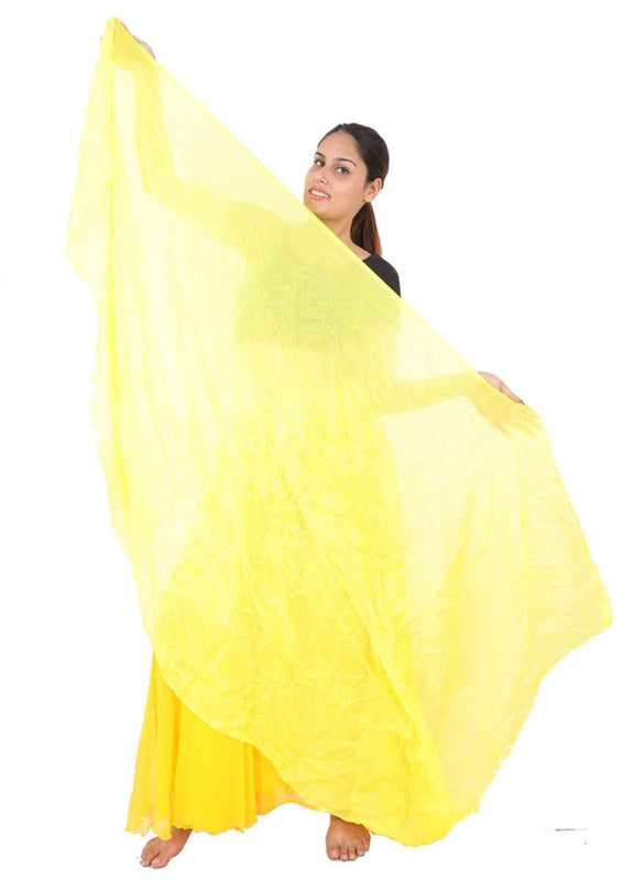 Wevez Women's Mix Color Belly Dance Chiffon Veils, One Size, Assorted