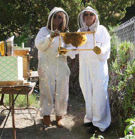 To Bee or Not to Bee: the Truth Beehind Honey and Beeswax