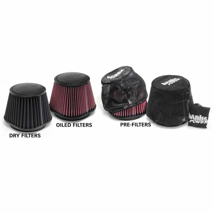 Banks Power 10-12 Dodge 6.7L CUMMINS Ram-Air Intake System - Dry Filter