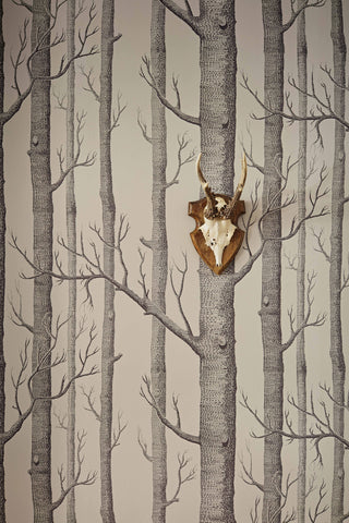 the woods wallpaper Cole & son