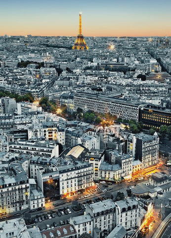 Paris Aerial View City at Dusk Wallpaper Mural