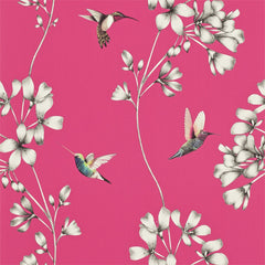 Amazilia Hummingbirds Floral Wallpaper