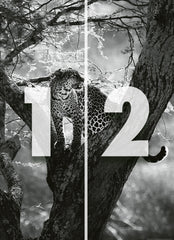 2 Panel Digital Wall Mural black white photography Leopard in Tree