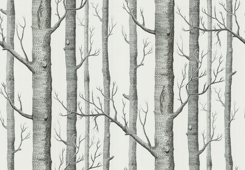 Cole & Son Woods Birch Trees Wallpaper