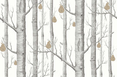 Woods & Pears Birch Trees Wallpaper