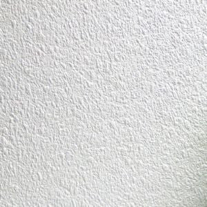 Clarendon Random Texture Rendered Concrete Paintable Wallpaper